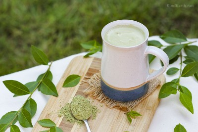 Milky matcha vegan drink with cashew nuts. High in antioxidants and l-theanine by Anastasia, Kind Earth